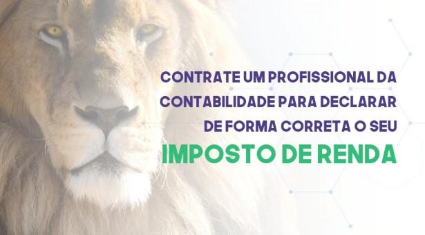 Campanha   Contrate um Profissional da Contabilidade para declarar de forma correta o seu IMPOSTO DE RENDA